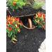 Cypress Mulch Carbon Black