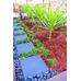 Cypress Mulch Uluru Red